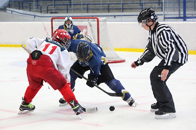 Amateur hockey with a professional twist